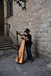 Spanish Harp Player Street Musician at Barcelona Cathedral.jpg
