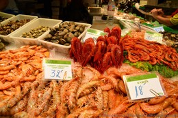 Various Shrimps & Clams for Sale @ La Boqueria.jpg