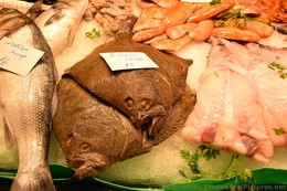 Rodaballo Salvaje Picture Wild Turbot for Sale @ La Boqueria.jpg