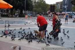 Tourists Feeding Pigeons at Catalunya Square Barcelona.jpg